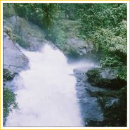 Meenvallam Waterfalls